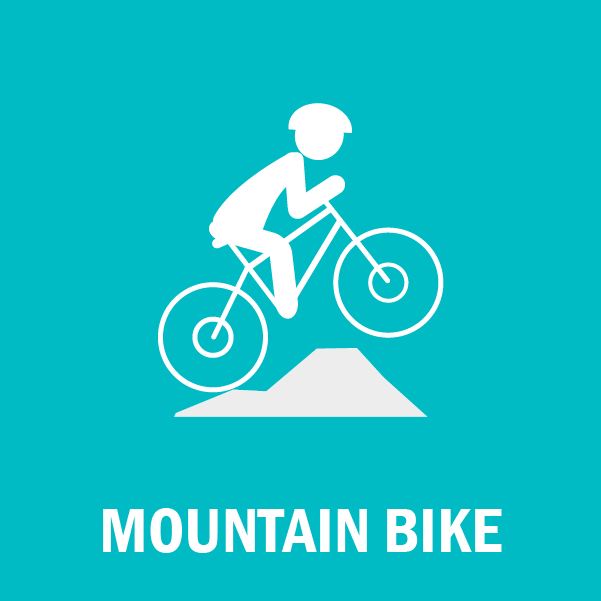 ICO MOUNTAIN BIKE